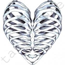 Serce Kości