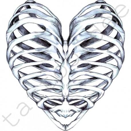 Serce - kości